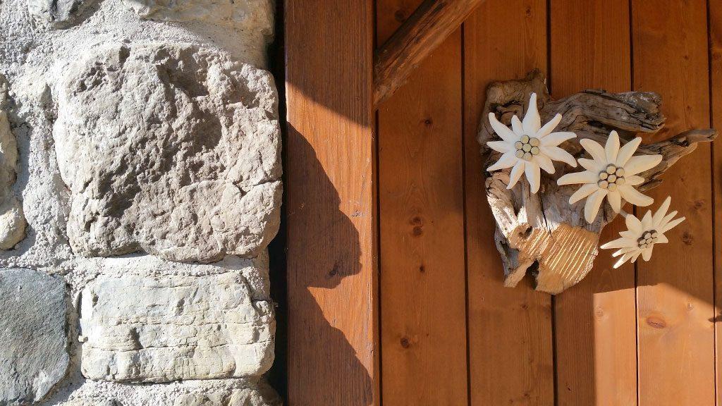 Edelweiss in Oberau
